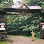 swietokrzyski park narodowy